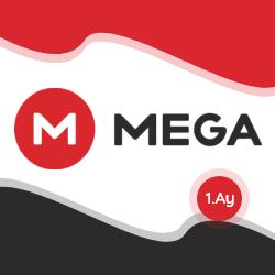 1 Aylık | 30 Gün Mega.nz Premium Hesap